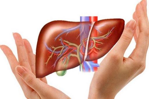 Đối tượng nào nên giải độc gan? Giải độc gan như thế nào là an toàn hiệu quả ?